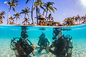 Best places to go diving around the world