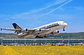 Singapore Airlines: Singapore to Newark